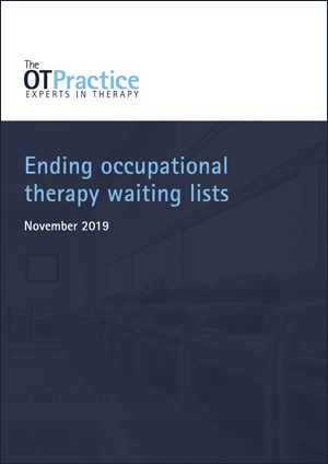 White paper - Local Authority occupational therapy waiting lists
